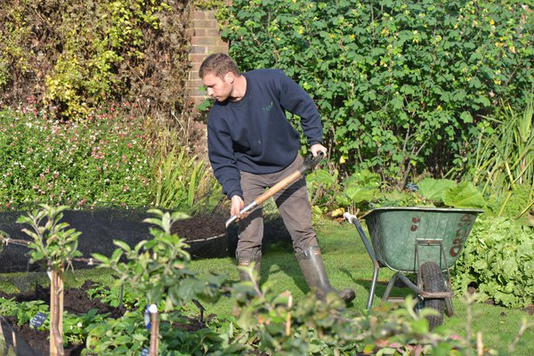 Joe Archer, Kew horticulturist in the Kitchen Garden