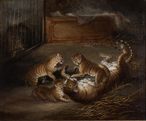 Three liger cubs bred between a lion and a tigress at the Royal Menagerie, Windsor Great Park, Oct 1824, Attr to Richard Barrett D Private Collection.  From Royal Pavilion Brighton's forthcoming Exotic Creatures exhibition.