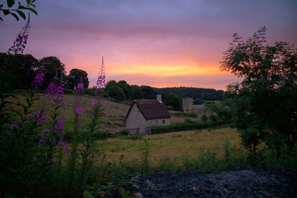 sunrise at beamish with local plants and new 1820s cottage